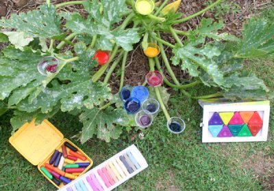 Sandrine Fresnard - Art-thérapie fais-toi jardinier - Caen-Ouistreham